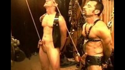 Five man sensual CBT, BDSM orgy featuring bears and otters. pt 1