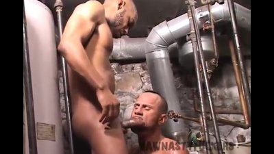 Bareback Boiler Room