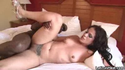 Tattooed Latina Fucked By A Black Stud