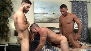 Extra Big Dicks Fat Cocks Trio