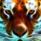 jaime75q Avatar image