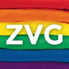 ZoneVideoGay's profile image