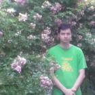 loris200 Avatar image