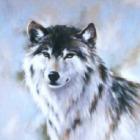silversunwolf-ph