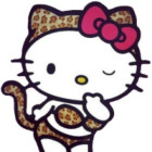 xkitty.net Avatar image